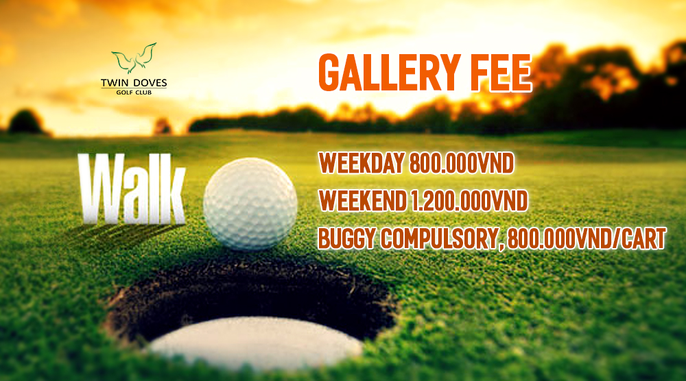 Promotion - Gallery fee